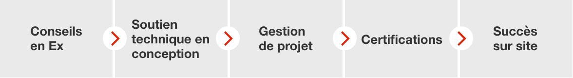 Ex-tech_Desktop_PROCESS_Fransk